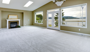 Carpet Cleaning Introduction